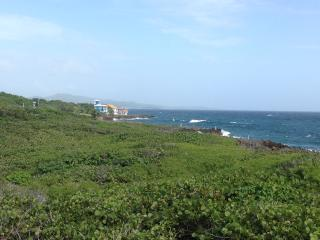 Private Oceanfront Island Home w/ Pool and Views!, Flowers Bay