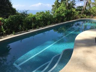 New Pool! Ocean view, rainforest setting