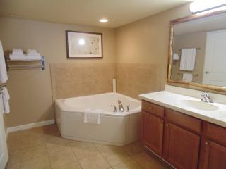 Master Suite Bathroom with jacuzzi tub