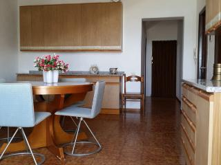 Three roomed-flat Mimosa near the sea, Villa Rosa di Martinsicuro