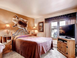 Appealingly Priced  Studio  - 1243-77041, Breckenridge