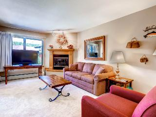 Charming  1 Bedroom  - 1243-21367, Breckenridge