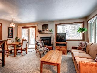 Economically Priced  1 Bedroom  - 1243-21369, Breckenridge