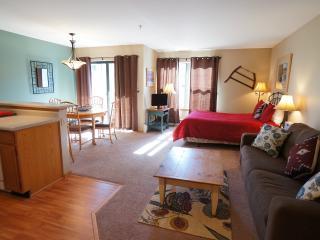 Affordably Priced  Studio  - 1243-75098, Breckenridge