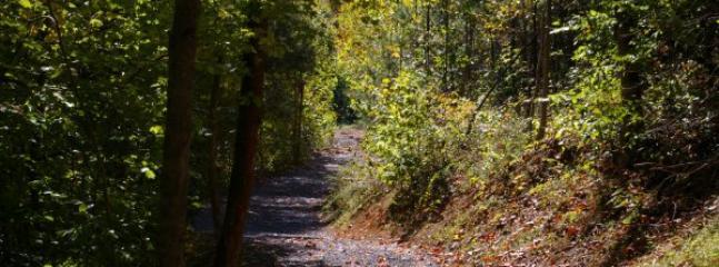 walking trails around the resort