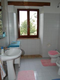 the bathroom upstairs