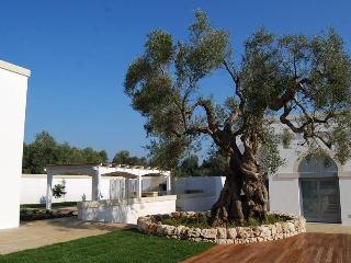 Modern Masseria in Salento with pool Sleeps 11