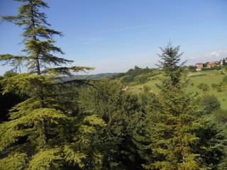 IL CEDRO - APPARTAMENTO NEL VERDE, Tagliolo Monferrato