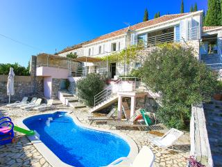 Beautiful villa with pool and a sea view Dubrovnik