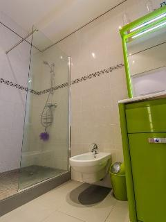 Large walk in shower with bidet and glossy sink unit
