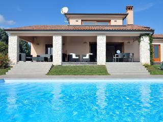 Modern-Luxury Villa with large pool & large garden, Labin