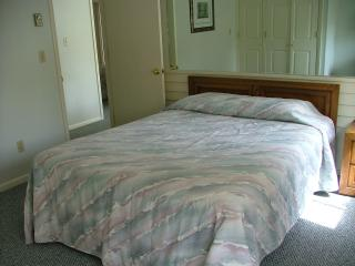 PRICE REDUCED - Feb 21-24 ONLY! B101 sleeps 6