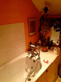 New bath ,tiles and ceiling lights have brightened up the bathroom up to date!