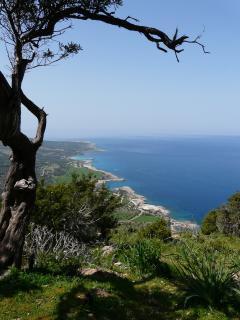Nearby Agamas Peninsula - wonderful walks !