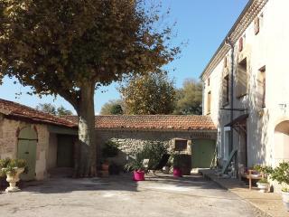 Domaine de la Tourmentine, Marsanne