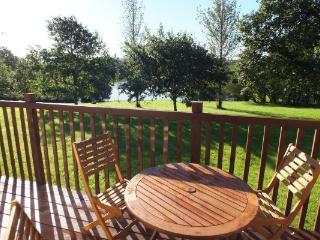 All our lodges have South-facing private terraces overlooking our own 1.5 acre coarse fishing lake