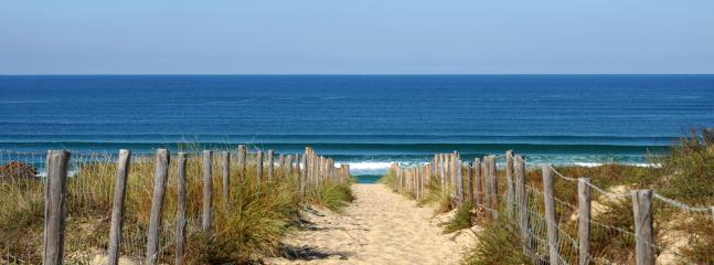 hossegor beach surf