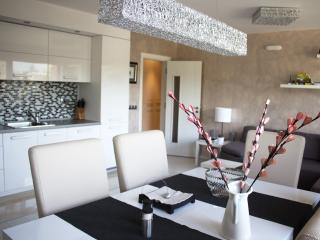 Deluxe Penthouse Apartment, Velingrad
