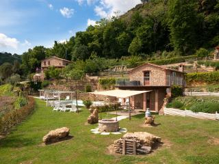 CasaMia Tuscan Country House with Pool and Jacuzzi