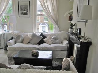 3-bed 2 bath luxury apartment, terrace, free wifi,14 min from Central London