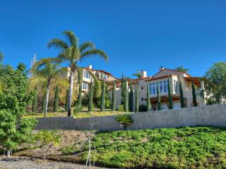 Amazing San Diego Vacation Home, Ocean View, Lg Pool and Hot Tub, Beautiful!