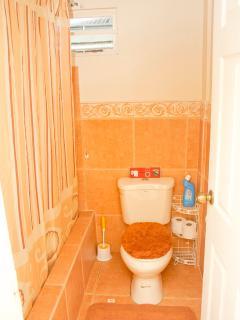 Earthy Toilet