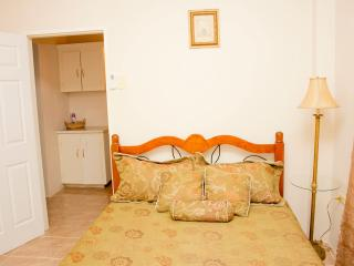 Earthy Bedroom #1 Photo #2