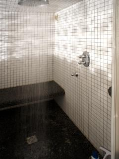 Huge rainfall shower with geothermal steambath