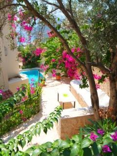 Villa Inci's gardens boast an abundance of vibrant bougainvillea