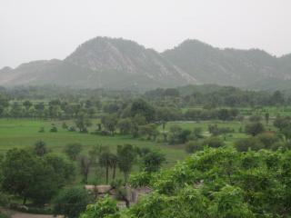 Holiday home in Rajashtan with lovely view to wild life....