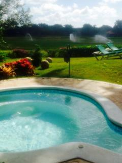 Jacuzzi with bromeliads garden in the back facing The Links.