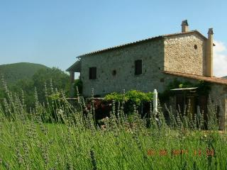 Nice Studio in Tuscany farmhouse sea  view