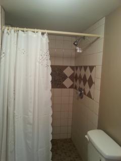 Well lit walk in shower