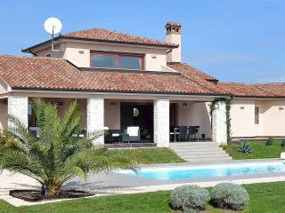 Modern-Luxury Villa with large pool & large garden, Labin