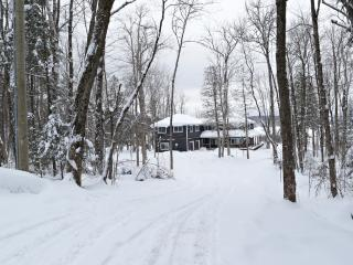 WATER FRONT MUSKOKA COTTAGE - Four Season Retreat