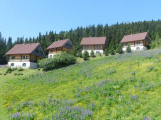 Almhütten Moselebauer, Bad Sankt Leonhard im Lavanttal