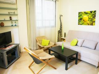 Living room with sofa bed, satellite TV, free wifi, A/C