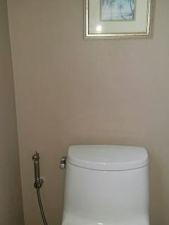 Hand held Bidet in private enclosed Master bedroom toilet