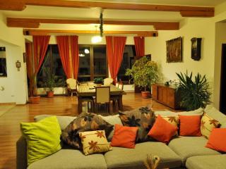Spacious Cozy Villa, 15 minutes drive to Brasov