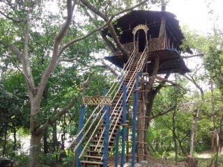Jaladarshini Farm House and Stay, Mandya