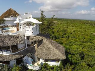 Eagle-eye view of Treehouse rising out of the forest and overlooking the sea
