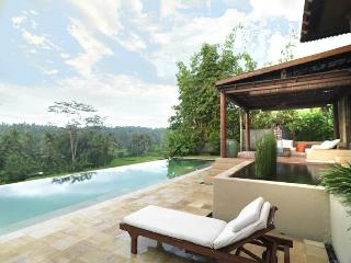 Luxury Villa Gajah Ubud in the rice fields
