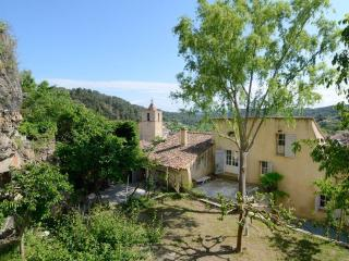 Pet-Friendly Provencal House with a Big Garden and Terrace, Barjols