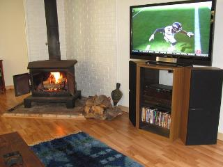 Cozy up by the wood stove fire and enjoy the entertainment!