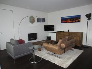 Luxury MDM Apartment A11-400, Zúrich