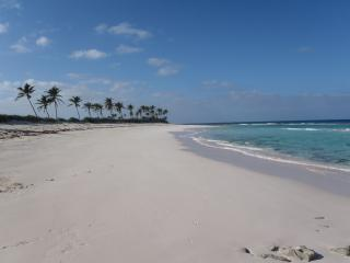 'Our' pink sand beach in front of the house