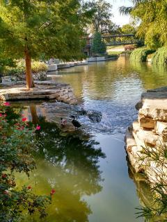 Riverwalk oasis.