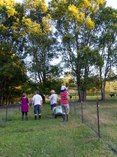 Farm tours for children of all ages