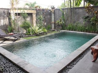 2 BDRM Private Pool Villas in Central Seminyak