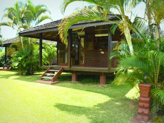 Fare Motu Tiare - Papara - Tahiti